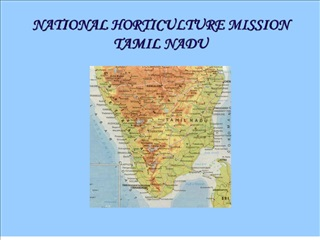 NATIONAL HORTICULTURE MISSION  TAMIL NADU