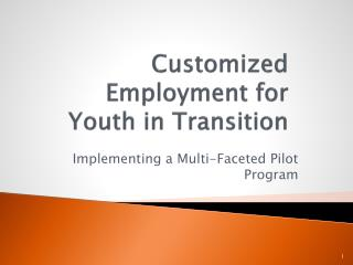 Customized Employment for Youth in Transition