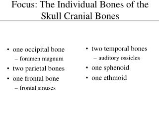 Focus: The Individual Bones of the Skull Cranial Bones