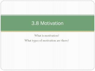 3.8 Motivation