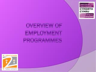 Overview of employment programmes