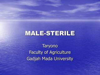 MALE-STERILE