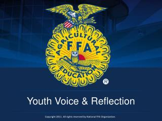Youth Voice & Reflection