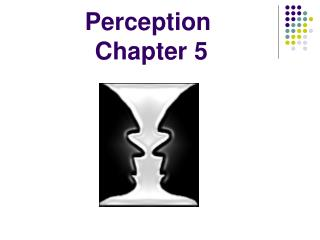 Perception  Chapter 5