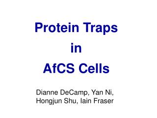 Protein Traps in AfCS Cells