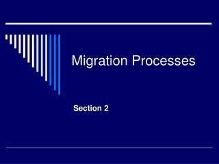 Migration Processes