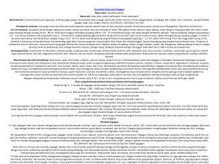 Daun Kaki Kuda atau Pegagan Nama latin: Centella asiatica Nama lain :  Gotu Kola, Asiatic pennywort, Indian pennywort