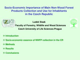 Socio-Economic Importance of Main Non-Wood Forest Products Collection and Use for Inhabitants  in the Czech Republic Lu