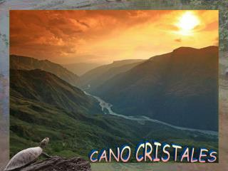 CANO CRISTALES