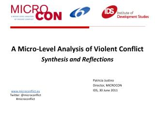 A Micro-Level Analysis of Violent Conflict  Synthesis and Reflections