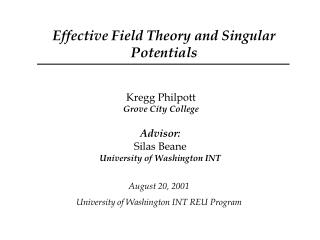 Effective Field Theory and Singular Potentials