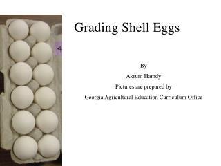 Grading Shell Eggs