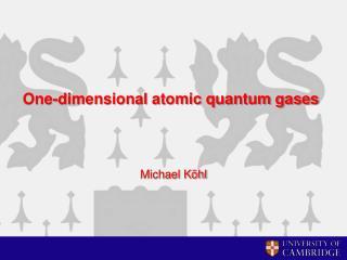 One-dimensional atomic quantum gases