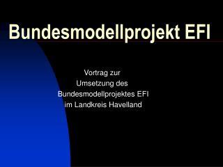 Bundesmodellprojekt EFI