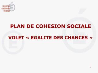 PLAN DE COHESION SOCIALE VOLET «EGALITE DES CHANCES»