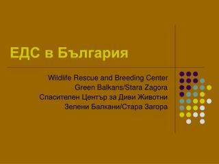 ЕДС в България