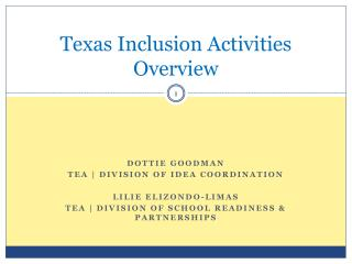 Texas Inclusion Activities Overview