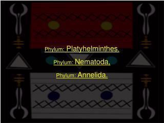 Phylum:  Platyhelminthes ,  Phylum:  Nematoda,  Phylum:  Annelida.