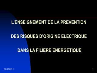 L'ENSEIGNEMENT DE LA PREVENTION DES RISQUES D'ORIGINE ELECTRIQUE   DANS LA FILIERE ENERGETIQUE