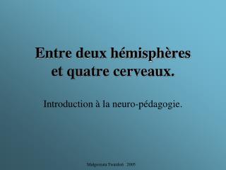 Entre deux hémisph è res et quatre cerveaux.