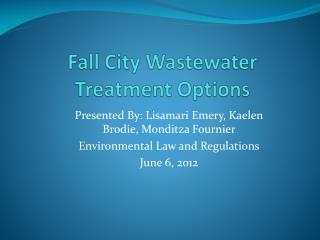 Fall City Wastewater Treatment Options