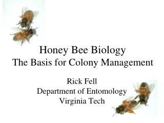 Honey Bee Biology The Basis for Colony Management