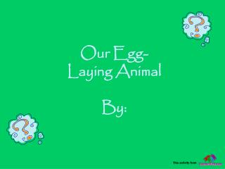 Our Egg- Laying Animal By: