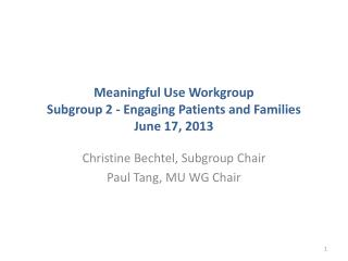 Meaningful Use Workgroup Subgroup 2 - Engaging Patients and Families June 17, 2013