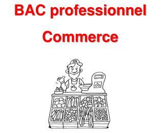 BAC professionnel  Commerce