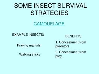 SOME INSECT SURVIVAL STRATEGIES
