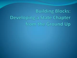 Building Blocks: Developing a State Chapter from the Ground Up