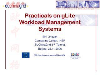 Practicals on gLite  Workload Management Systems