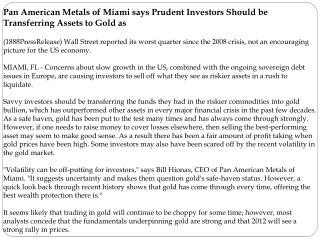 Pan American Metals of Miami says Prudent Investors Should b