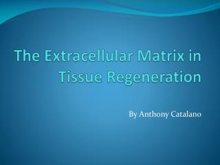 The Extracellular Matrix in Tissue Regeneration