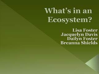 What's in an Ecosystem?