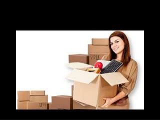 Enjoy the facilities of a shifting company and move things e