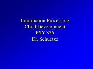 Information Processing Child Development PSY 356 Dr. Schuetze