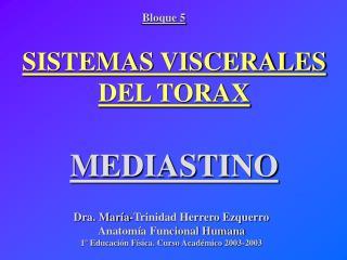 SISTEMAS VISCERALES DEL TORAX  MEDIASTINO
