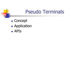 Pseudo Terminals