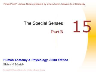 The Special Senses Part B