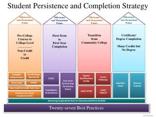 Student Persistence and Completion Strategy