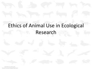 Ethics of Animal Use in Ecological Research