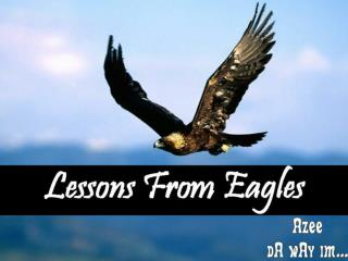 Lessons+From+Eagles