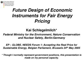Future Design of Economic Instruments for Fair Energy Pricing
