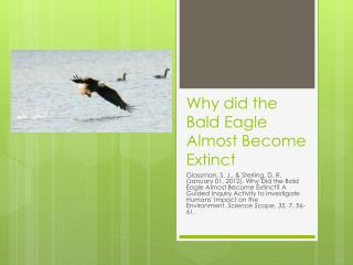Why did the Bald Eagle Almost Become Extinct