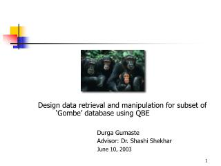 Design data retrieval and manipulation for subset of 'Gombe' database using QBE Durga Gumaste