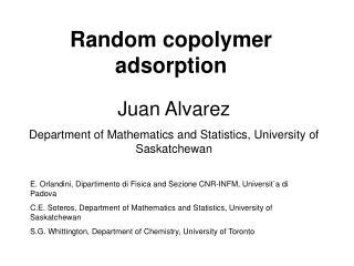 Random copolymer adsorption