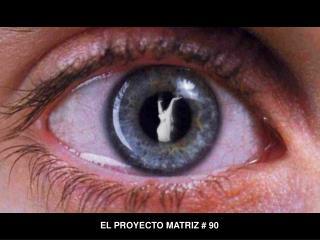 EL PROYECTO MATRIZ # 90