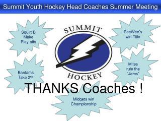 Summit Youth Hockey Head Coaches Summer Meeting