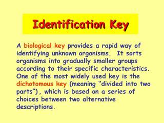 Identification Key